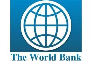 Всемирный банк предупреждает о «кризисе обучения»