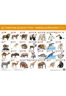 Животные дальних стран. Жывёлы далёкіх краін (интерактивный плакат)